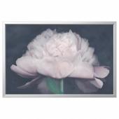 БЬЁРКСТА Картина с рамой, Цветок, цвет алюминия, 118x78 см